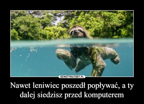 Nawet leniwiec poszedł popływać, a ty dalej siedzisz przed komputerem –