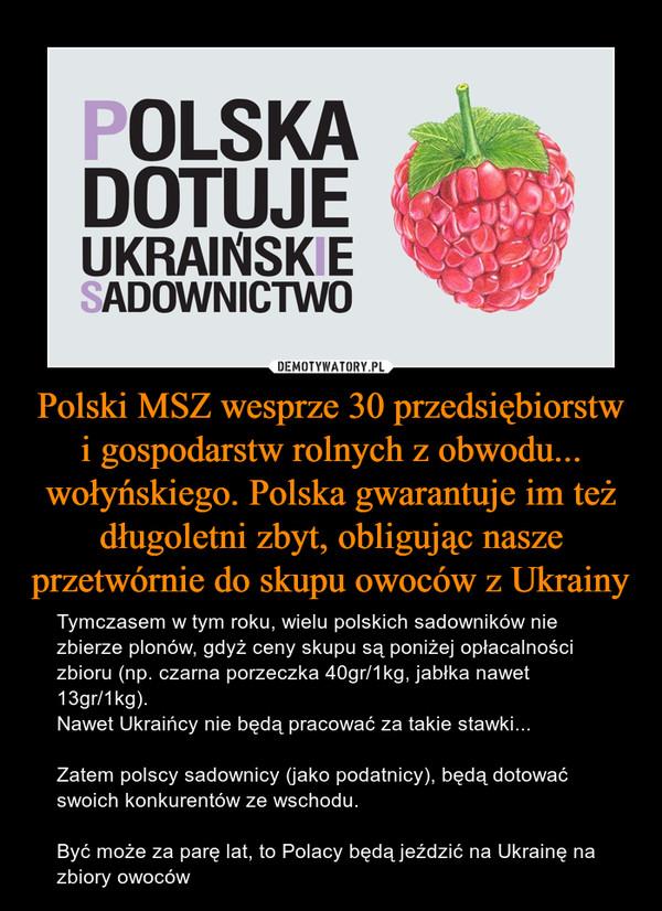 Polski MSZ wesprze 30 przedsiębiorstw i gospodarstw rolnych z obwodu... wołyńskiego. Polska gwarantuje im też długoletni zbyt, obligując nasze przetwórnie do skupu owoców z Ukrainy – Tymczasem w tym roku, wielu polskich sadowników nie zbierze plonów, gdyż ceny skupu są poniżej opłacalności zbioru (np. czarna porzeczka 40gr/1kg, jabłka nawet 13gr/1kg).Nawet Ukraińcy nie będą pracować za takie stawki...Zatem polscy sadownicy (jako podatnicy), będą dotować swoich konkurentów ze wschodu.Być może za parę lat, to Polacy będą jeździć na Ukrainę na zbiory owoców POLSKA DOTUJE UKRAIŃSKIE SADOWNICTWO