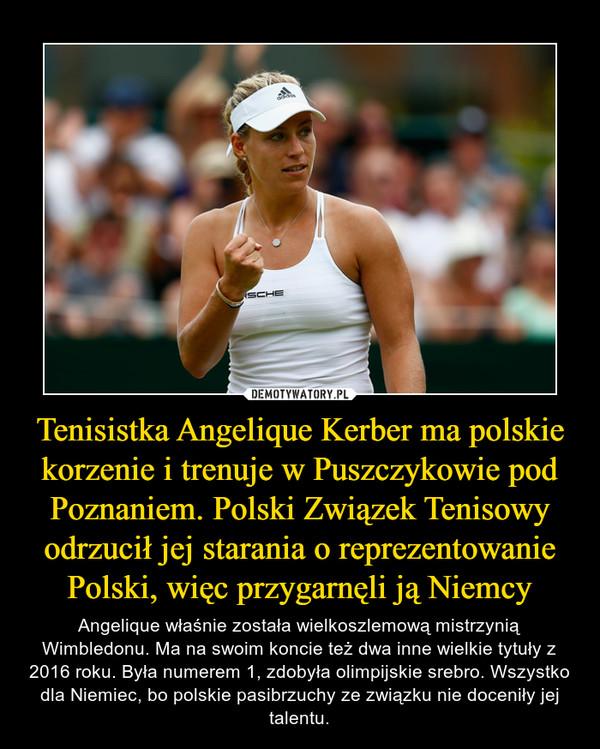 Tenisistka Angelique Kerber ma polskie korzenie i trenuje w Puszczykowie pod Poznaniem. Polski Związek Tenisowy odrzucił jej starania o reprezentowanie Polski, więc przygarnęli ją Niemcy – Angelique właśnie została wielkoszlemową mistrzynią Wimbledonu. Ma na swoim koncie też dwa inne wielkie tytuły z 2016 roku. Była numerem 1, zdobyła olimpijskie srebro. Wszystko dla Niemiec, bo polskie pasibrzuchy ze związku nie doceniły jej talentu.