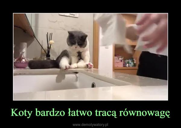 Koty bardzo łatwo tracą równowagę –