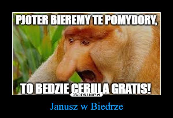 Janusz w Biedrze –