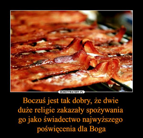 Boczuś jest tak dobry, że dwie duże religie zakazały spożywania go jako świadectwo najwyższego poświęcenia dla Boga –