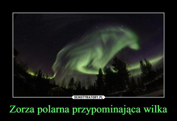 Zorza polarna przypominająca wilka –