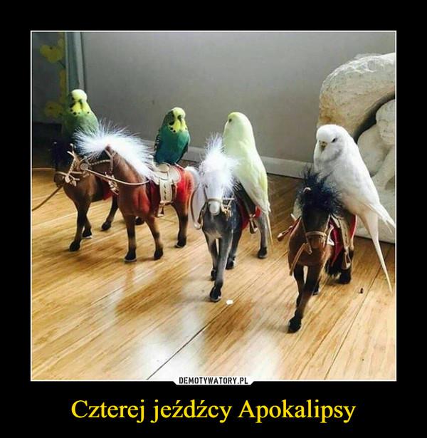 Czterej jeźdźcy Apokalipsy –