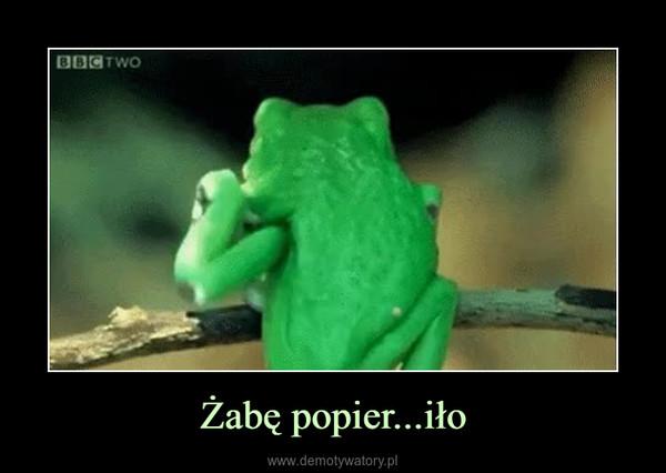 Żabę popier...iło –