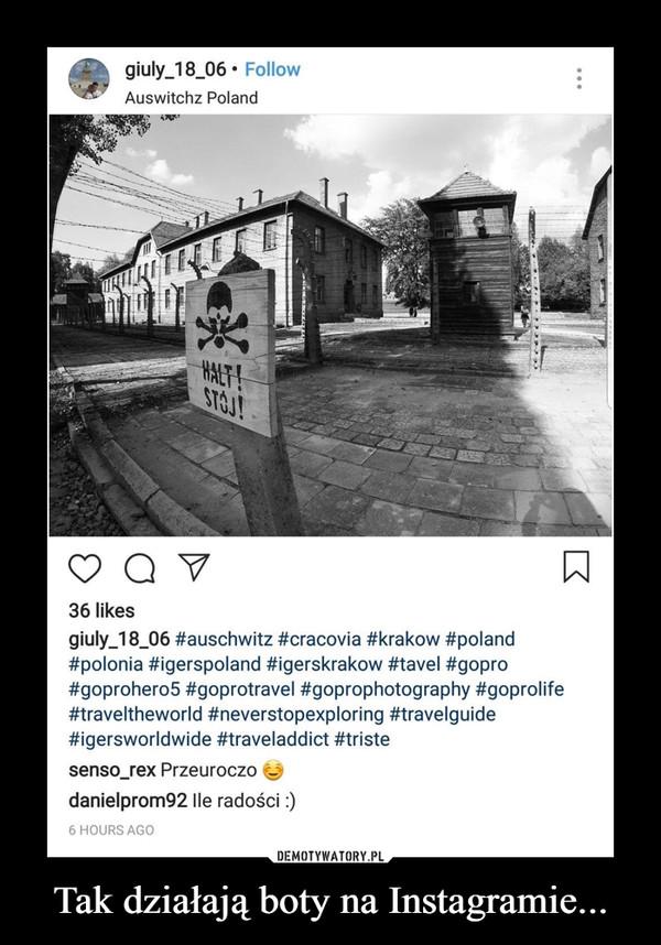 Tak działają boty na Instagramie... –  Auswitchz Polandsenso rex Przeuroczo danielprom92 Ile radości :)