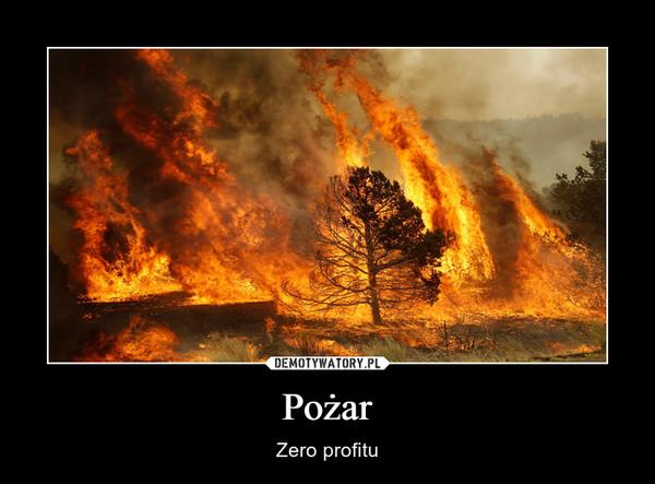 Pożar – Zero profitu