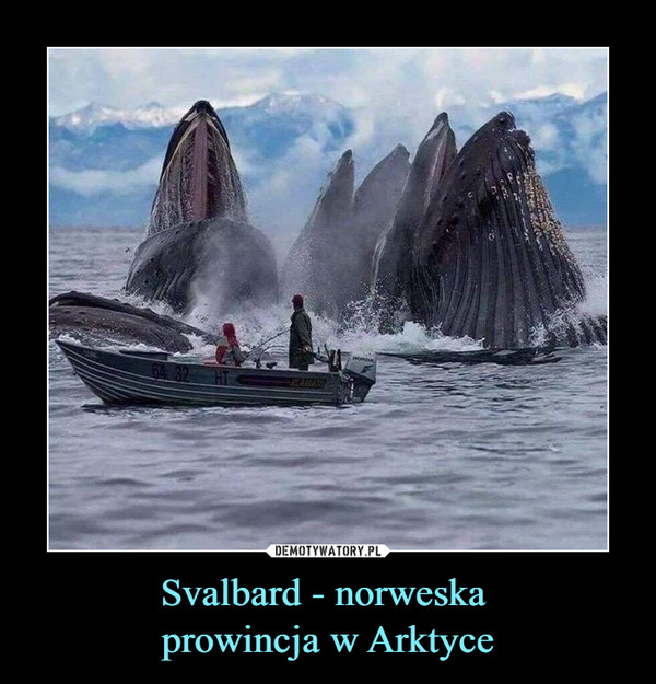 Svalbard - norweska prowincja w Arktyce –