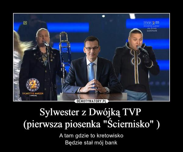 """Sylwester z Dwójką TVP (pierwsza piosenka """"Ściernisko"""" ) – A tam gdzie to kretowiskoBędzie stał mój bank"""