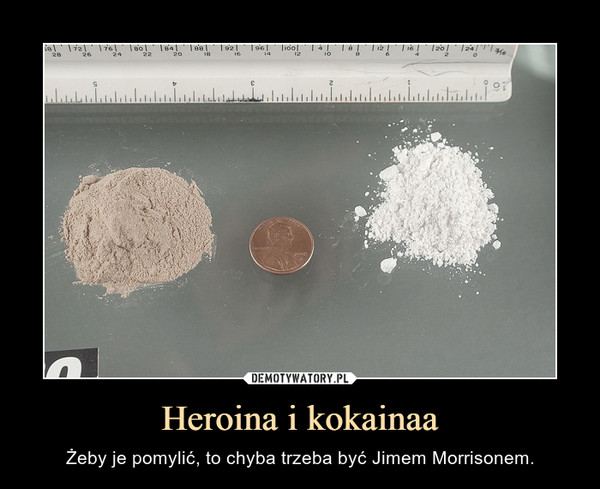 Heroina i kokainaa – Żeby je pomylić, to chyba trzeba być Jimem Morrisonem.