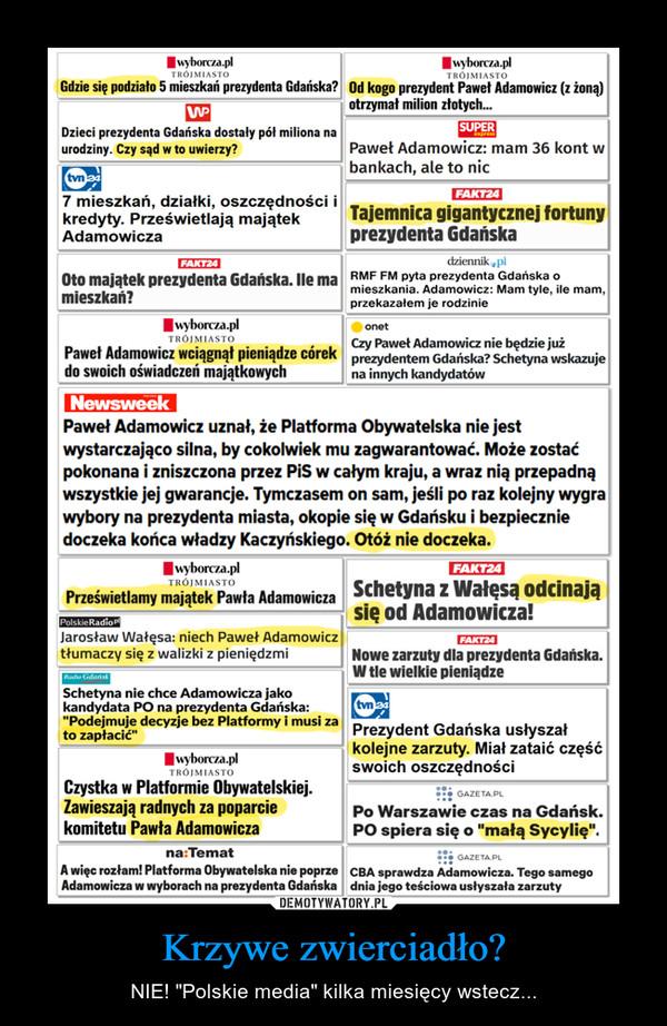 """Krzywe zwierciadło? – NIE! """"Polskie media"""" kilka miesięcy wstecz..."""