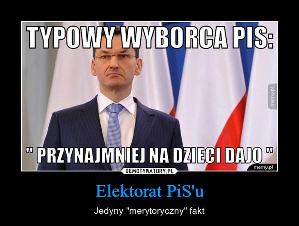 """Elektorat PiS'u – Jedyny """"merytoryczny"""" fakt"""