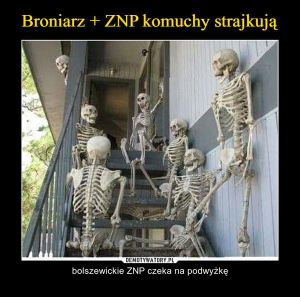 – bolszewickie ZNP czeka na podwyżkę