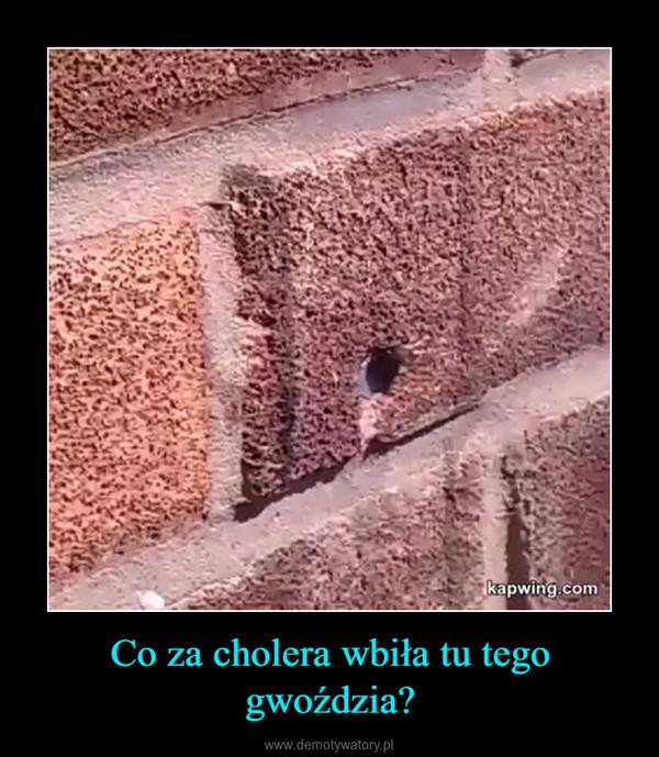 Co za cholera wbiła tu tego gwoździa? –