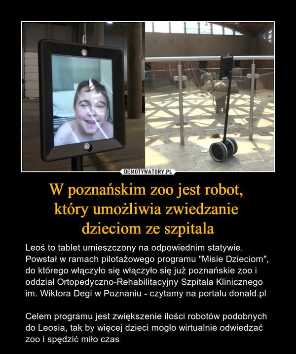 """W poznańskim zoo jest robot, który umożliwia zwiedzanie dzieciom ze szpitala – Leoś to tablet umieszczony na odpowiednim statywie. Powstał w ramach pilotażowego programu """"Misie Dzieciom"""", do którego włączyło się włączyło się już poznańskie zoo i oddział Ortopedyczno-Rehabilitacyjny Szpitala Klinicznego im. Wiktora Degi w Poznaniu - czytamy na portalu donald.plCelem programu jest zwiększenie ilości robotów podobnych do Leosia, tak by więcej dzieci mogło wirtualnie odwiedzać zoo i spędzić miło czas"""