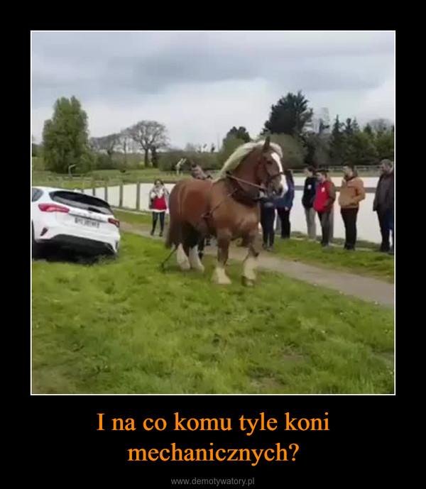 I na co komu tyle koni mechanicznych? –