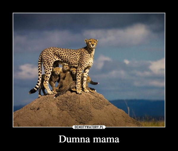 Dumna mama –