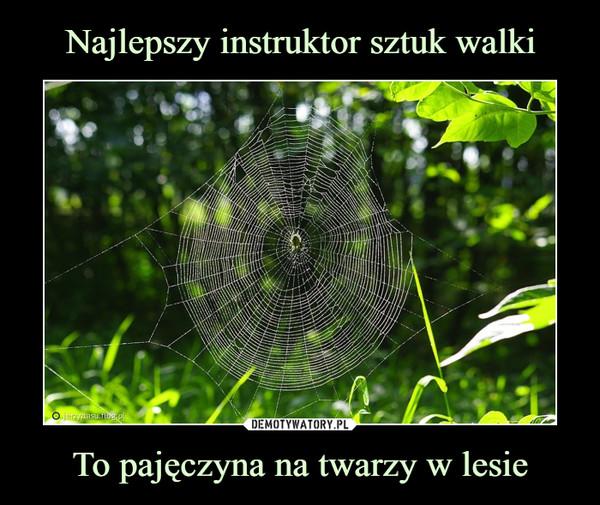 To pajęczyna na twarzy w lesie –