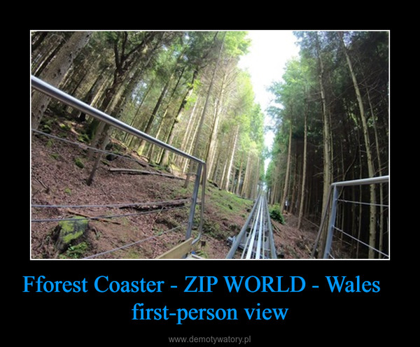 Fforest Coaster - ZIP WORLD - Wales    first-person view –