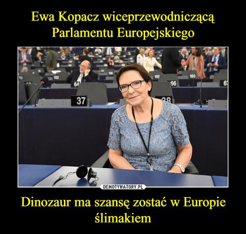 Ewa Kopacz wiceprzewodniczącą Parlamentu Europejskiego Dinozaur ma szansę zostać w Europie ślimakiem