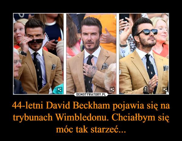 44-letni David Beckham pojawia się na trybunach Wimbledonu. Chciałbym się móc tak starzeć... –
