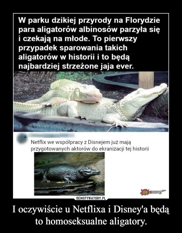 I oczywiście u Netflixa i Disney'a będą to homoseksualne aligatory. –