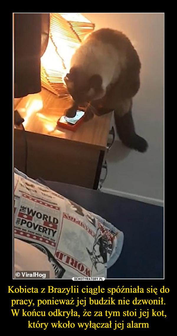 Kobieta z Brazylii ciągle spóźniała się do pracy, ponieważ jej budzik nie dzwonił. W końcu odkryła, że za tym stoi jej kot, który wkoło wyłączał jej alarm –