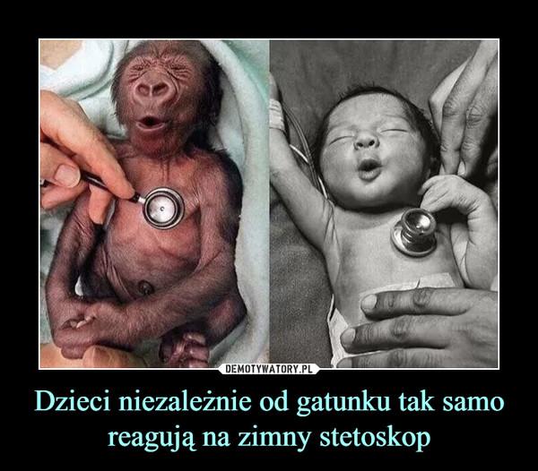 Dzieci niezależnie od gatunku tak samo reagują na zimny stetoskop –