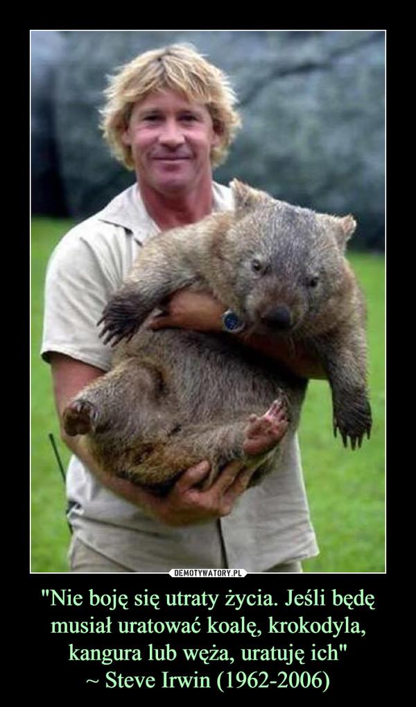 """""""Nie boję się utraty życia. Jeśli będę musiał uratować koalę, krokodyla, kangura lub węża, uratuję ich""""~ Steve Irwin (1962-2006) –"""