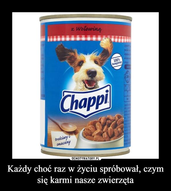 Każdy choć raz w życiu spróbował, czym się karmi nasze zwierzęta –