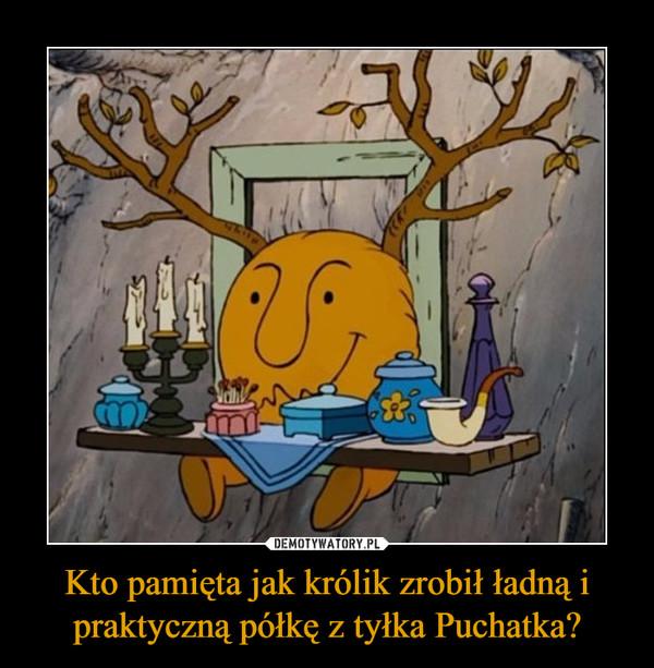 Kto pamięta jak królik zrobił ładną i praktyczną półkę z tyłka Puchatka? –