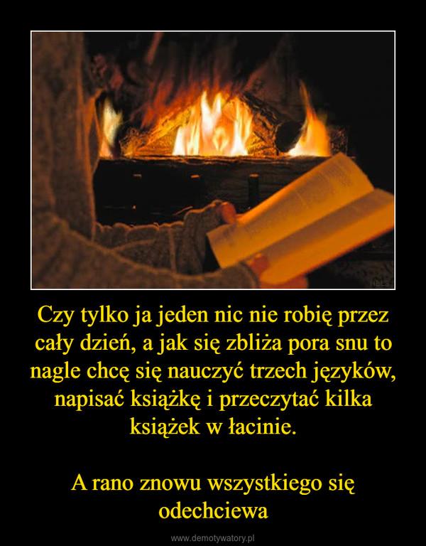 Czy tylko ja jeden nic nie robię przez cały dzień, a jak się zbliża pora snu to nagle chcę się nauczyć trzech języków, napisać książkę i przeczytać kilka książek w łacinie.A rano znowu wszystkiego się odechciewa –
