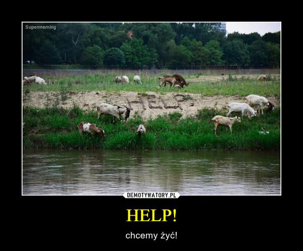 HELP! – chcemy żyć!