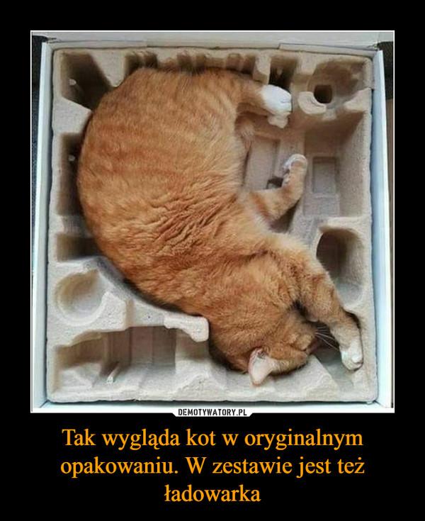 Tak wygląda kot w oryginalnym opakowaniu. W zestawie jest też ładowarka –