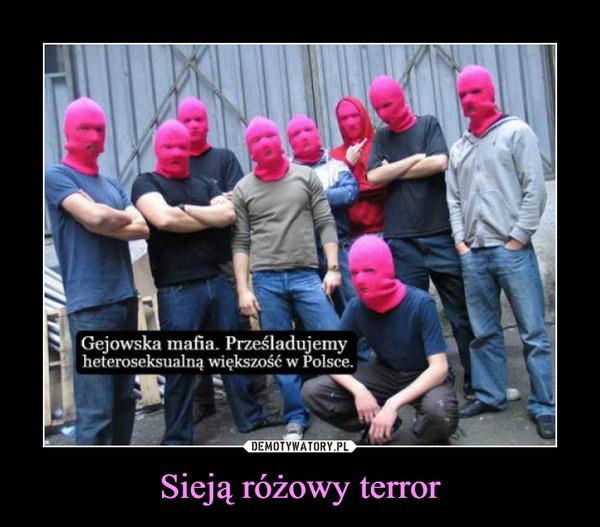 Sieją różowy terror –  Gejowska mafia. Prześladujemyheteroseksualną większość w Polsce.