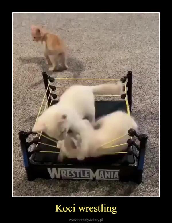 Koci wrestling –
