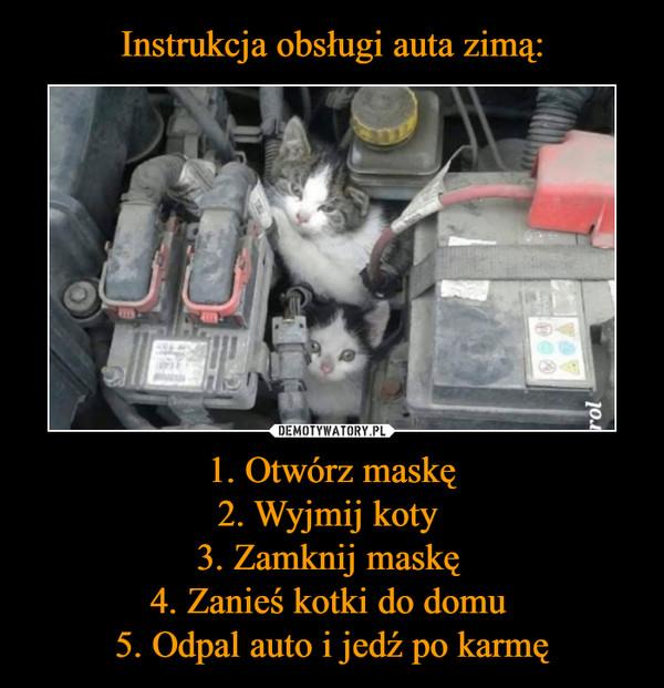 1. Otwórz maskę2. Wyjmij koty 3. Zamknij maskę 4. Zanieś kotki do domu 5. Odpal auto i jedź po karmę –