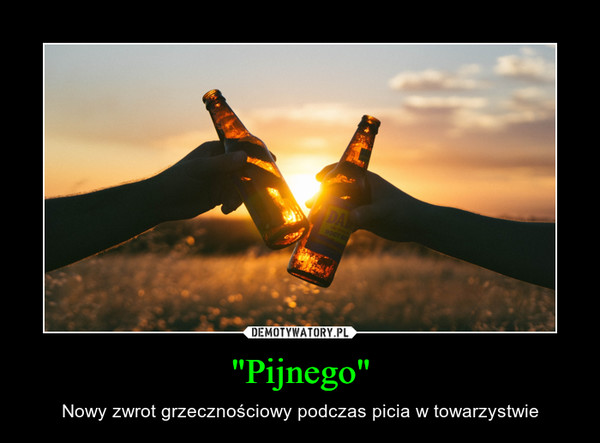"""""""Pijnego"""" – Nowy zwrot grzecznościowy podczas picia w towarzystwie"""
