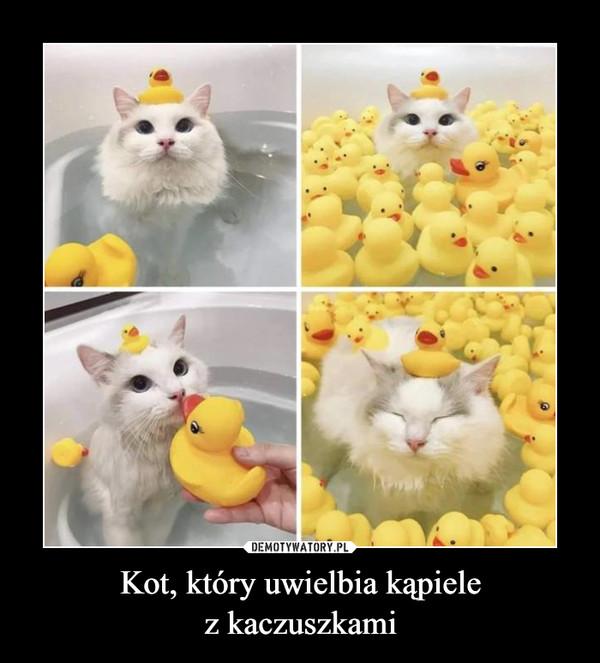 Kot, który uwielbia kąpielez kaczuszkami –