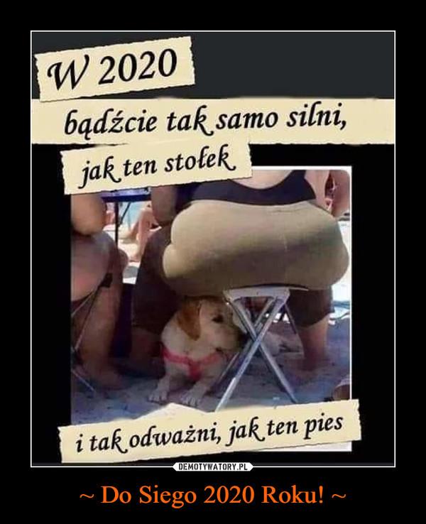 ~ Do Siego 2020 Roku! ~ –  w 2020 bądźcie tak samo silni jak ten stołek i tak odważni jak ten pies