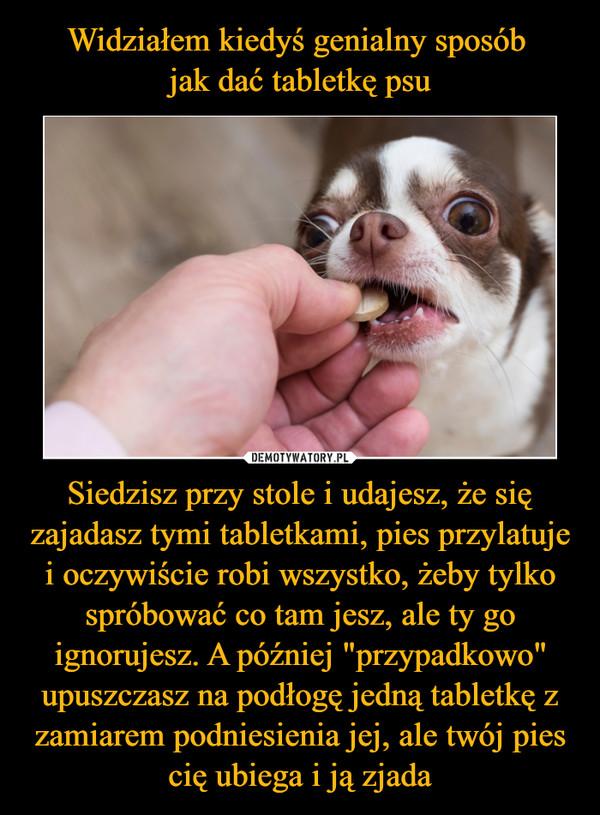 """Siedzisz przy stole i udajesz, że się zajadasz tymi tabletkami, pies przylatuje i oczywiście robi wszystko, żeby tylko spróbować co tam jesz, ale ty go ignorujesz. A później """"przypadkowo"""" upuszczasz na podłogę jedną tabletkę z zamiarem podniesienia jej, ale twój pies cię ubiega i ją zjada –"""