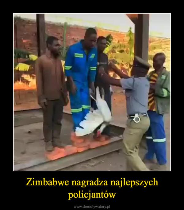 Zimbabwe nagradza najlepszych policjantów –