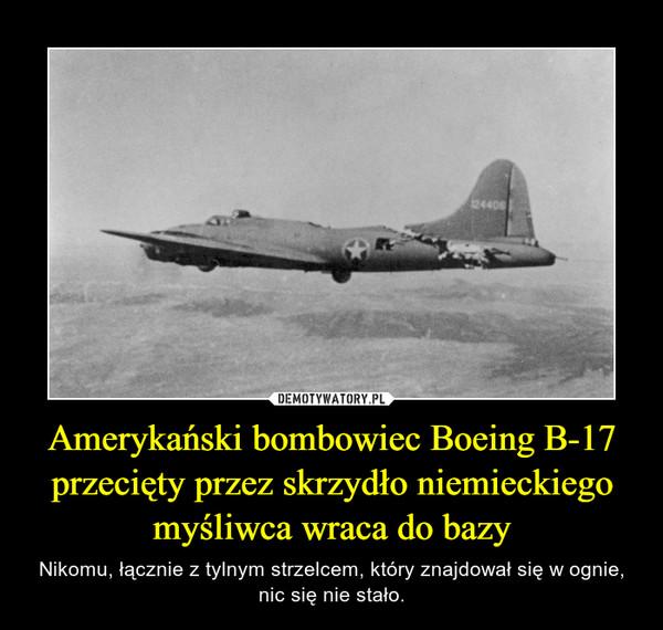 Amerykański bombowiec Boeing B-17 przecięty przez skrzydło niemieckiego myśliwca wraca do bazy – Nikomu, łącznie z tylnym strzelcem, który znajdował się w ognie, nic się nie stało.