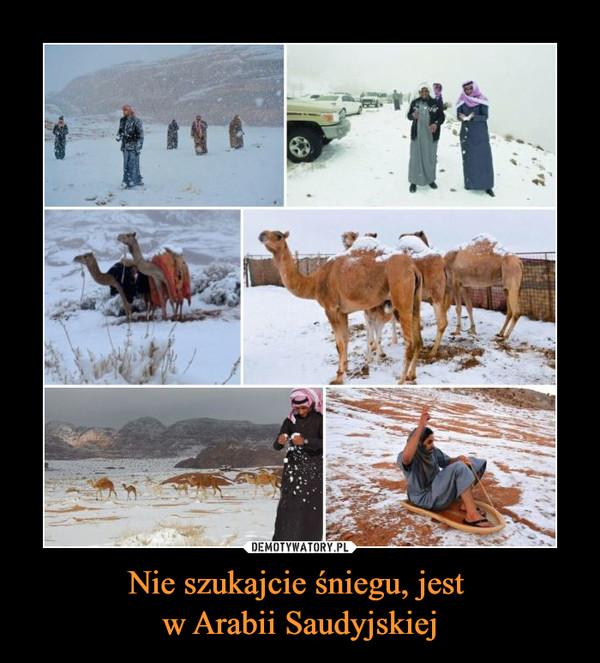 Nie szukajcie śniegu, jest w Arabii Saudyjskiej –