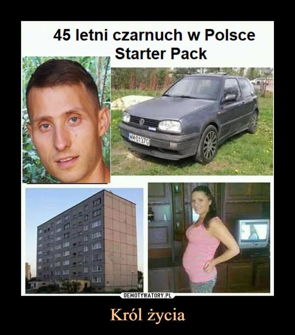 Król życia –  45 letni czarnuch w PolsceStarter Pack