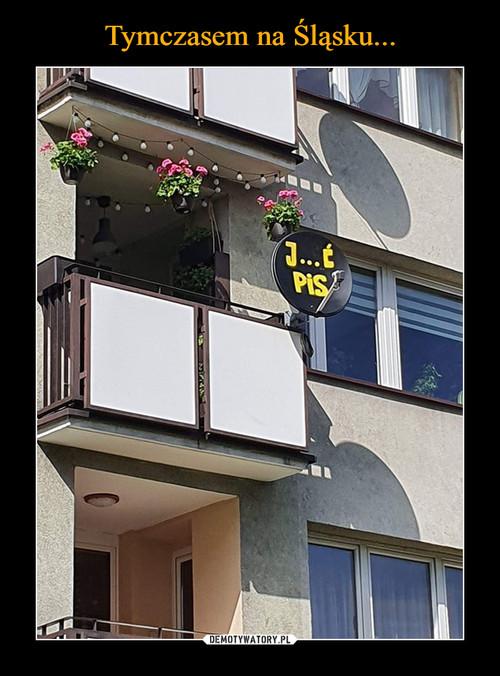 Tymczasem na Śląsku...
