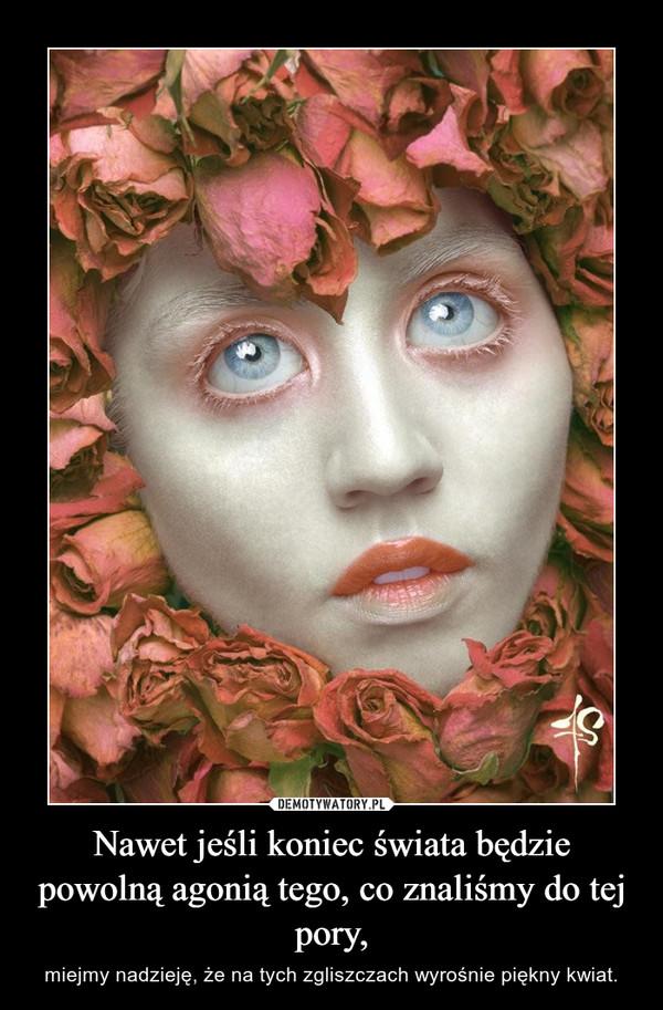 Nawet jeśli koniec świata będzie powolną agonią tego, co znaliśmy do tej pory, – miejmy nadzieję, że na tych zgliszczach wyrośnie piękny kwiat.