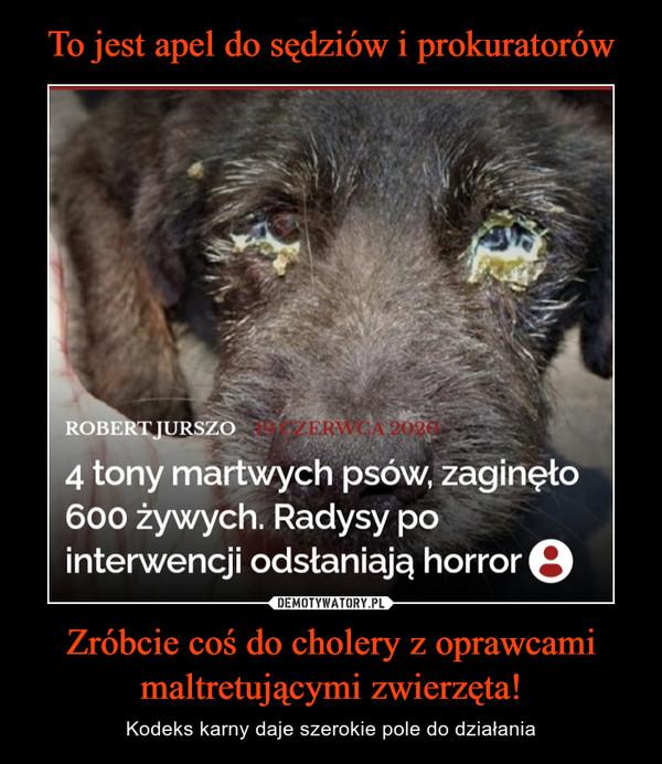 Zróbcie coś do cholery z oprawcami maltretującymi zwierzęta! – Kodeks karny daje szerokie pole do działania