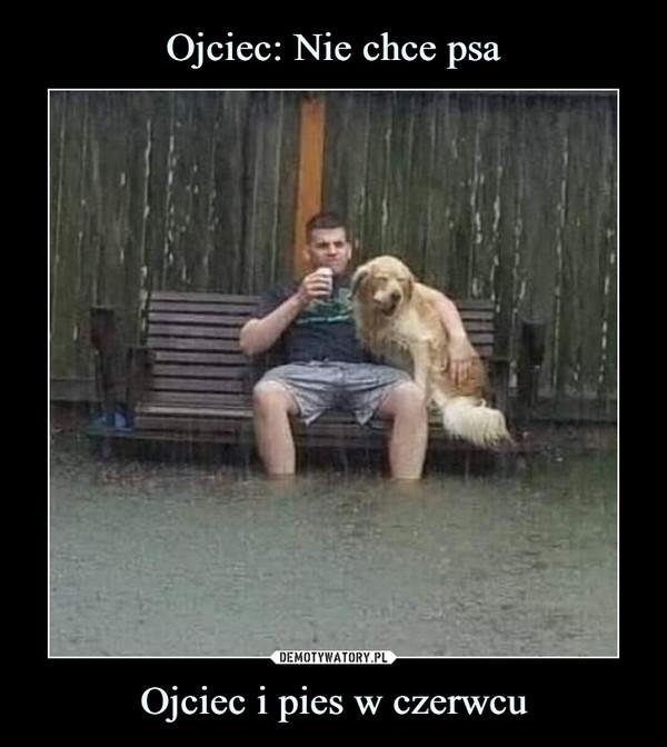 Ojciec i pies w czerwcu –