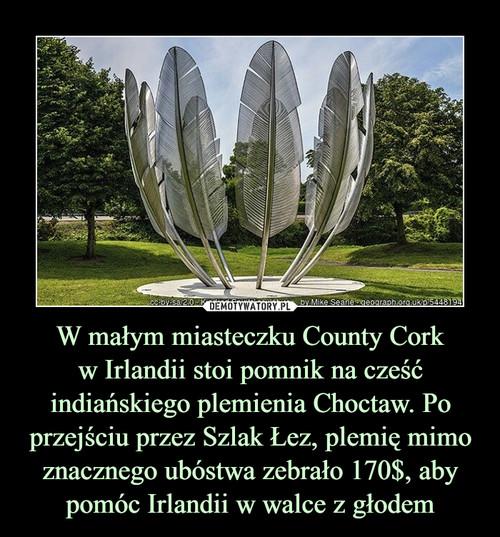 W małym miasteczku County Cork w Irlandii stoi pomnik na cześć indiańskiego plemienia Choctaw. Po przejściu przez Szlak Łez, plemię mimo znacznego ubóstwa zebrało 170$, aby pomóc Irlandii w walce z głodem